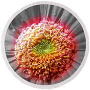 Centre Of Beauty Round Beach Towel