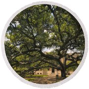 Century Tree Round Beach Towel