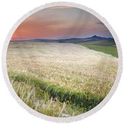 Cereal Fields Round Beach Towel