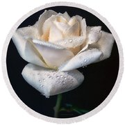Champagne Rose Flower Macro Round Beach Towel by Jennie Marie Schell