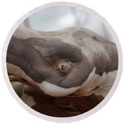 Changing Bark Colors...   # Round Beach Towel