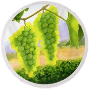Chardonnay Grapes Round Beach Towel by Mike Robles