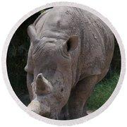 Waco Texas Rhinoceros Round Beach Towel