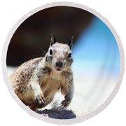 Charging Ground Squirrel Round Beach Towel
