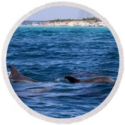 Chasing Dolphins  Round Beach Towel