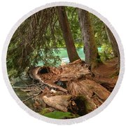 Cheakamus Lake Rainforest - British Columbia Round Beach Towel