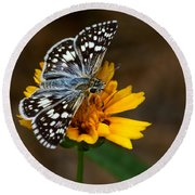 Checkered Skipper Square Round Beach Towel