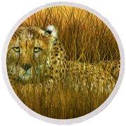 Cheetah - In The Wild Grass Round Beach Towel