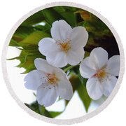 Cherry Blossom 2 Round Beach Towel