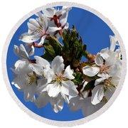 Cherry Blossom Blue Sky - 1 Round Beach Towel