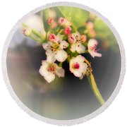 Cherry Blossom Flowers Round Beach Towel