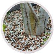 Cherry Blossoms 2013 - 002 Round Beach Towel