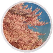 Cherry Blossoms 2013 - 013 Round Beach Towel