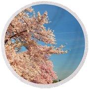 Cherry Blossoms 2013 - 014 Round Beach Towel