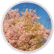 Cherry Blossoms 2013 - 016 Round Beach Towel