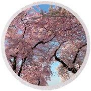 Cherry Blossoms 2013 - 025 Round Beach Towel