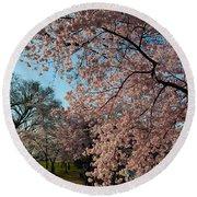 Cherry Blossoms 2013 - 038 Round Beach Towel