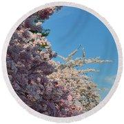Cherry Blossoms 2013 - 046 Round Beach Towel