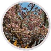 Cherry Blossoms 2013 - 051 Round Beach Towel