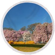 Cherry Blossoms 2013 - 052 Round Beach Towel