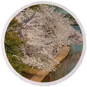 Cherry Blossoms 2013 - 053 Round Beach Towel