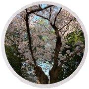 Cherry Blossoms 2013 - 056 Round Beach Towel