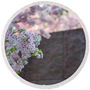 Cherry Blossoms 2013 - 066 Round Beach Towel