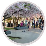 Cherry Blossoms 2013 - 069 Round Beach Towel