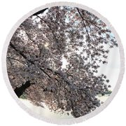 Cherry Blossoms 2013 - 092 Round Beach Towel