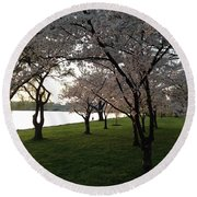 Cherry Blossoms Along The Potomac Round Beach Towel