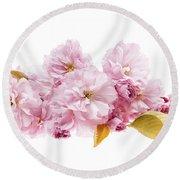 Cherry Blossoms Arrangement Round Beach Towel by Elena Elisseeva