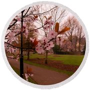 Cherry Blossoms At Kirkland In Kendal Round Beach Towel