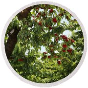 Cherry Orchard  Round Beach Towel