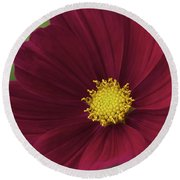 Cherry Petals Round Beach Towel
