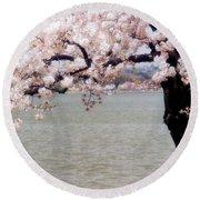 Cherry Tree And The Potomac Round Beach Towel