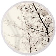 Cherry Tree Blossom Artistic Closeup Sepia Toned Round Beach Towel