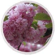 Cherry Tree Blossoms Round Beach Towel