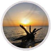 Chesapeake Bay Driftwood At Sunset Round Beach Towel