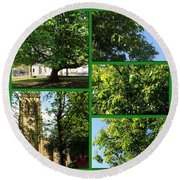 Chestnut Trees At Christchurch Round Beach Towel