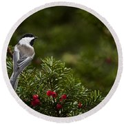 Chickadee Pictures 373 Round Beach Towel