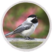 Chickadee Song Round Beach Towel