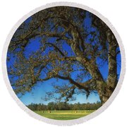 Chickamauga Battlefield Round Beach Towel by Mountain Dreams