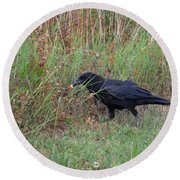 Chicken Eating Crow Round Beach Towel
