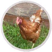 Chicken Portrait Round Beach Towel
