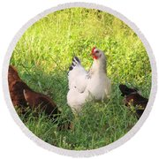 Chickens In Tall Grass Round Beach Towel