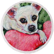 Chihuahua Who Came To Visit Round Beach Towel