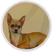 Chihuahua Round Beach Towel