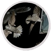Chimney Swifts Round Beach Towel