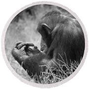 Chimpanzee In Thought Round Beach Towel