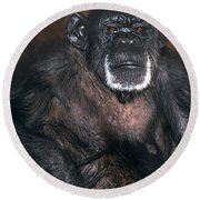 Chimpanzee Portrait Endangered Species Wildlife Rescue Round Beach Towel